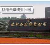 百铸网技术服务专家走进林州合鑫铸业 (14)